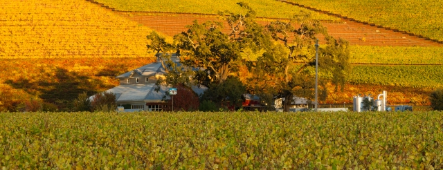 Kunde_Winery,_Fall_2012