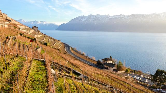 Lavaux Vineyards – Switzerland