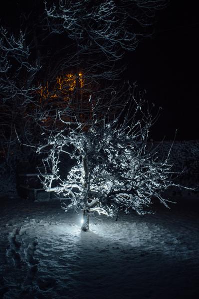 Westmidlands Snowfall 2015-1