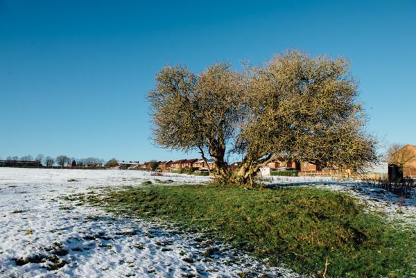 Westmidlands Snowfall 2015-12