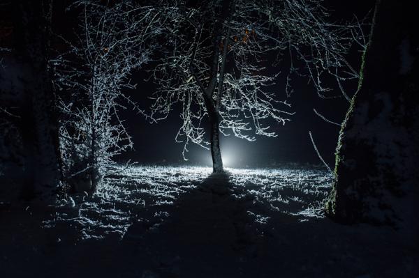 Westmidlands Snowfall 2015-2