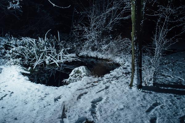 Westmidlands Snowfall 2015-5