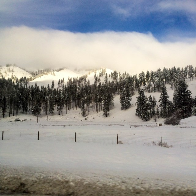 Winter Wonderland | Breezing Through