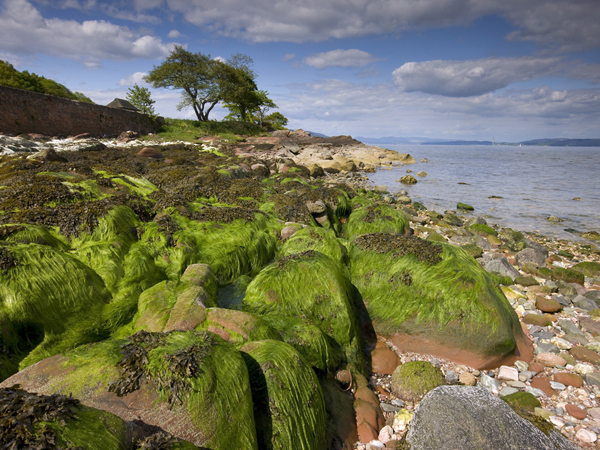 Beach scene from Kerrycroy, Isle of Bute, Argyll, Scotland, United Kingdom. (Photo by: UIG via Getty Images)