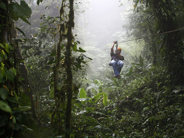 COSTA RICA / Canopy cable ride at Monteverde cloud forest. † Yadid Levy / Anzenberger