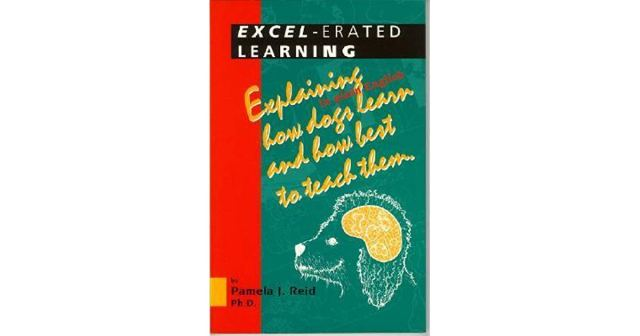 Excel-erated Learning by Pamela Reid