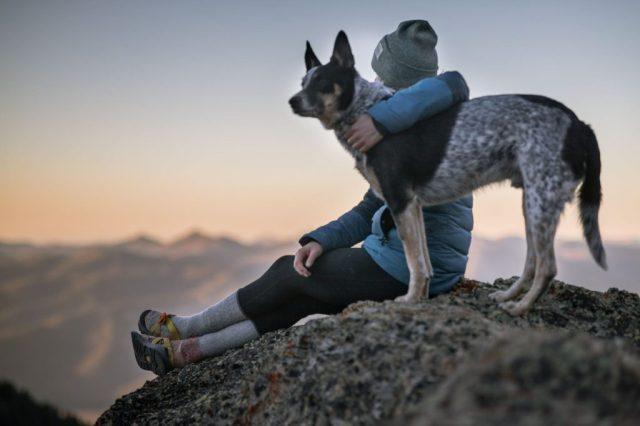 Thomas-N-Salzano-New-York-Dog-Trainer